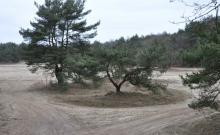 03-03-13-4x4-rijden-9